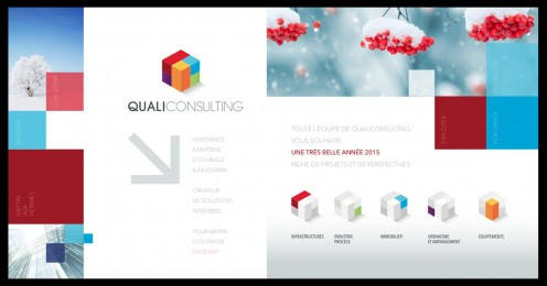 visuel_qualiconsulting