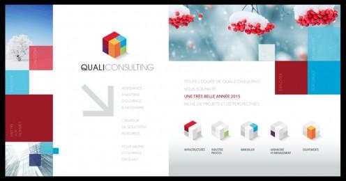visuel_qualiconsulting
