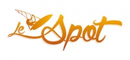 logo-LeSpot